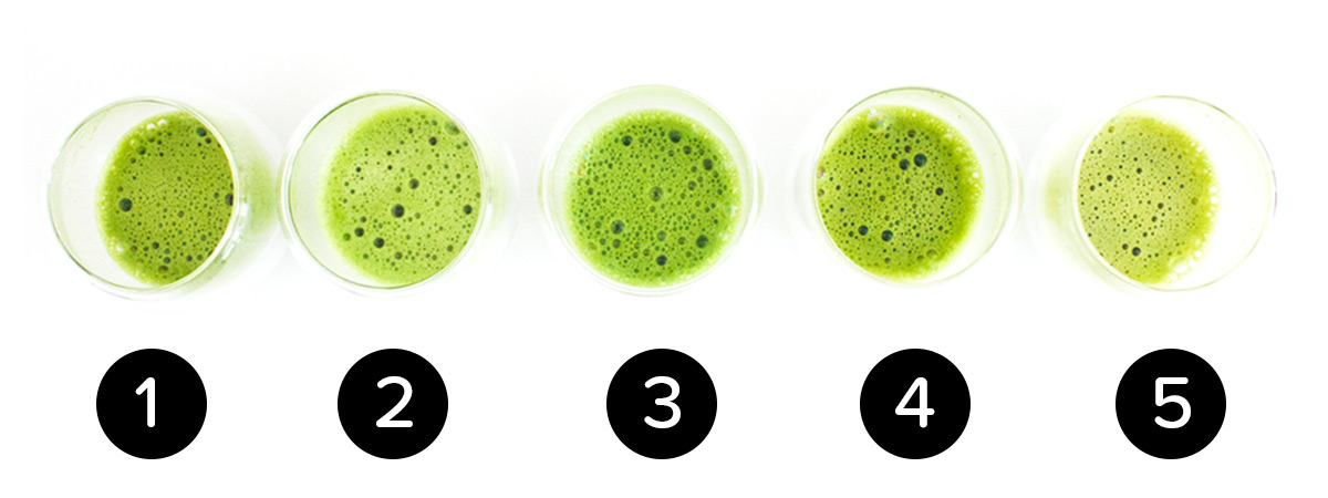 2015 Matcha Showdown Key | Matcha Reviews